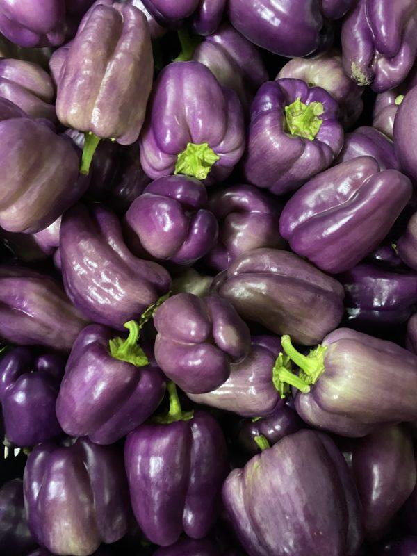 Purplebellpepperlocal